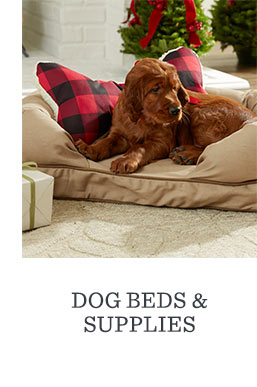 Dog Beds & Supplies