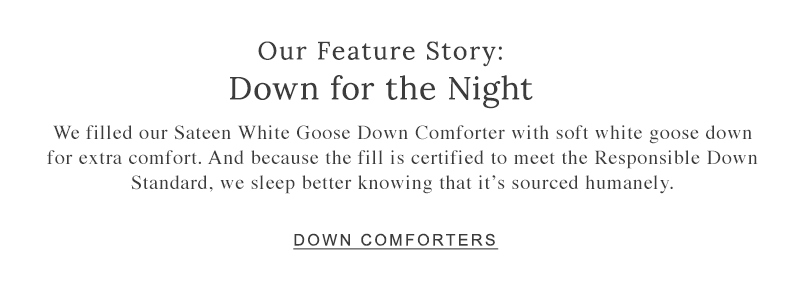 Our Feature Story: Down for the Night