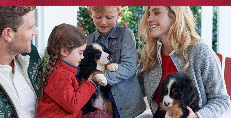 Family wearing L.L.Bean clothing and holding puppies.