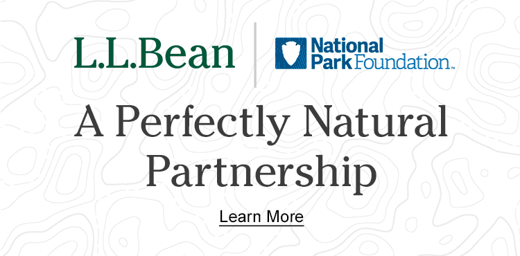 A Perfectly Natural Partnership