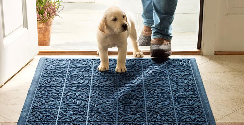 Puppy and man stepping onto a Waterhog Mat.