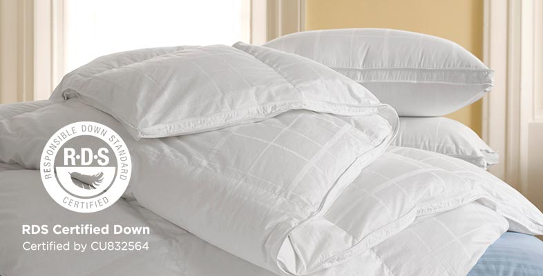 An assortment of L.L.Bean RDS Certified Down Comforters and Pillows.