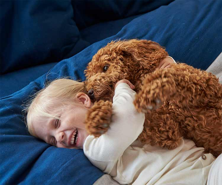 Little kid playing with puppy on Ultrasoft Comfort Flannel Bedding.