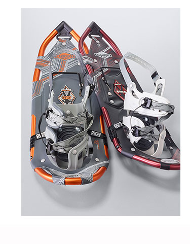 A pair of snowshoes.