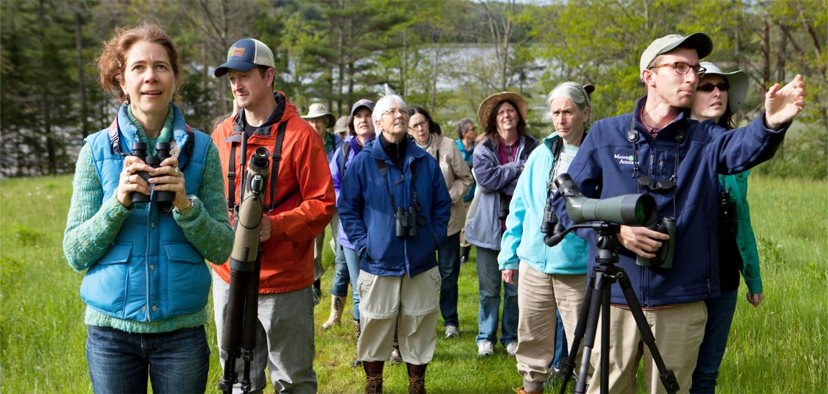 Group birding with Maine Audubon