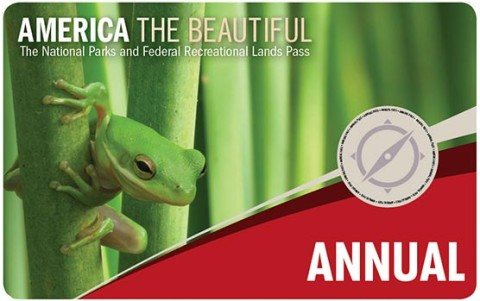 A picture of a national parks annual pass.