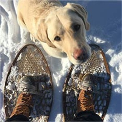 L.L.Bean Boots with a dog in the snow