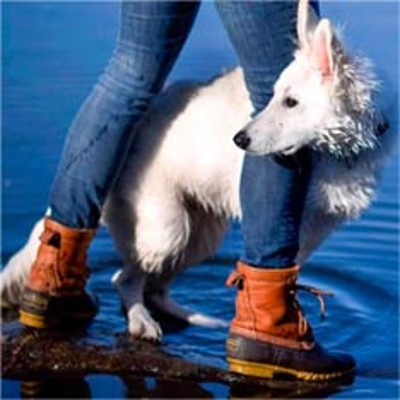 Person in L.L.Bean Boots walking on the shore with their dog