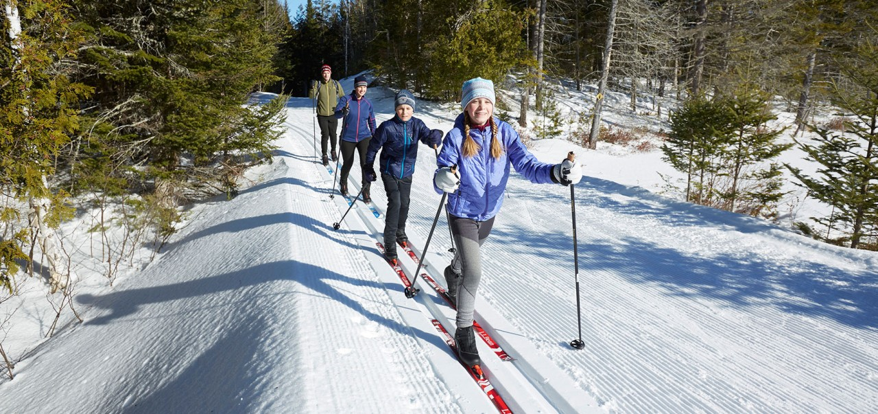 Family out cross-country skiing