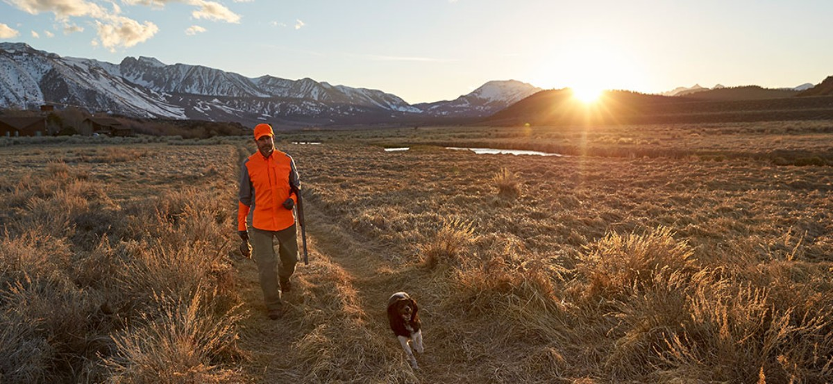 Hunter in hi-vis orange walking in an open field with dog at sunrise.