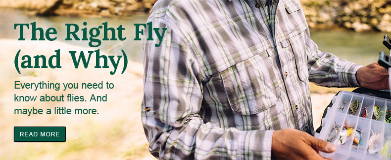 The Right Fly (and Why) Everything you need to know about flies. And maybe a little more.