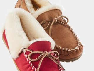 Close-up of two slippers