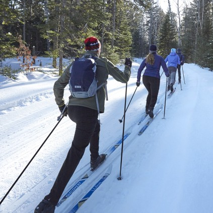 In-track skiing at a nordic ski center.