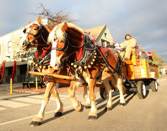 Take in Freeport's festive lights on a free horse-drawn wagon ride. Leave from Main Street, in front of the flagship store.