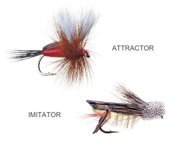 Attractor vs Imitator