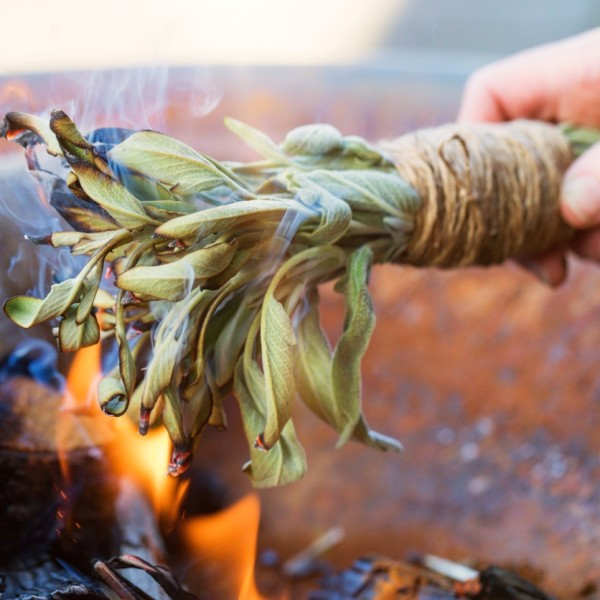 6. Burning sage keeps mosquitoes at bay