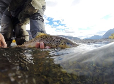 Photo of fly-fishing.