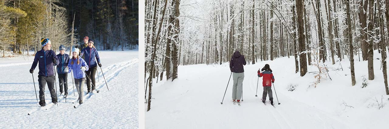 Family cross country skiing and a mother and son cross country skiing through the wintry woods.