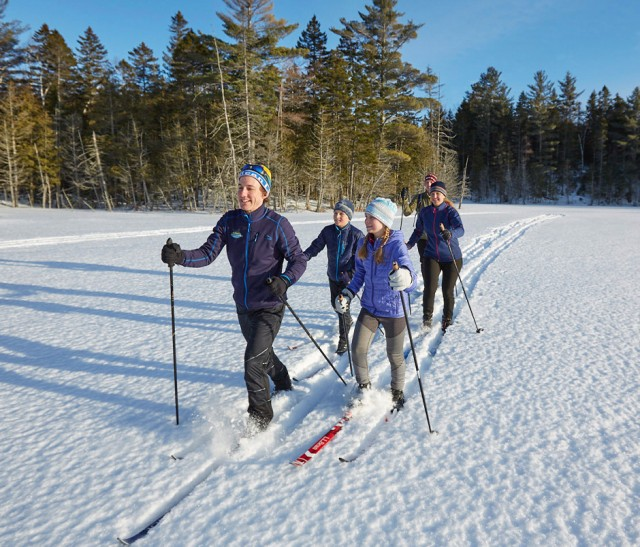 Family cross country skiing on a beautiful winter day.