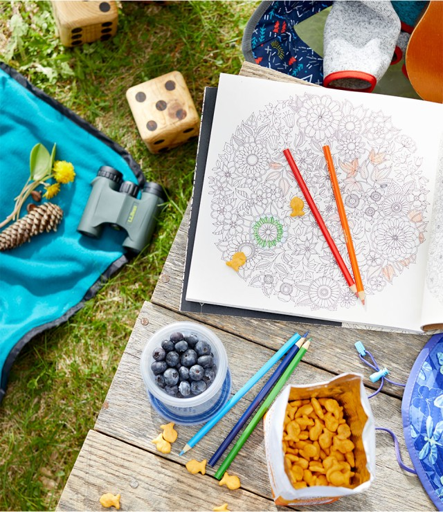Overhead view of picnic spread with coloring book, binoculars, big dice and fun snacks.