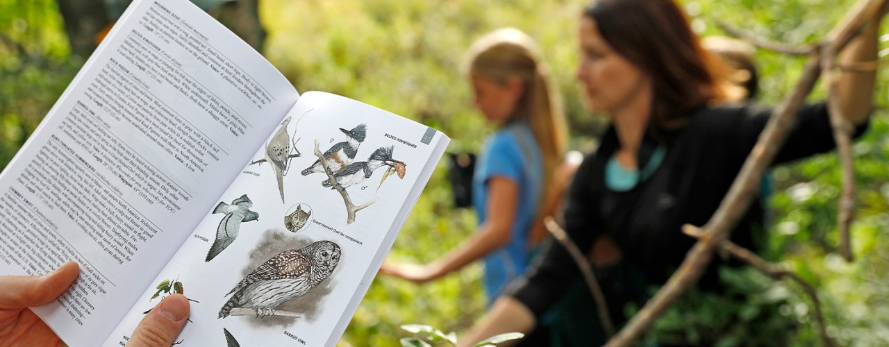 Close-up of hands holding open bird field guide and woman with 2 kids in the background.