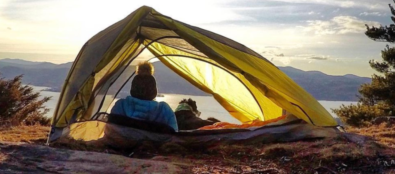 A person and a dog, in their tent watching the sunset.