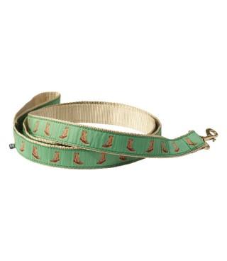 Novelty Dog Collar & Leash