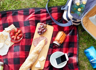 Black and red plaid picnic blanket with wooden board with cheese and bread.