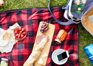 Picnic set up on green grass