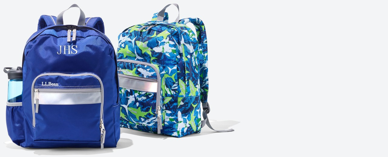 Pair of kids' school backpacks