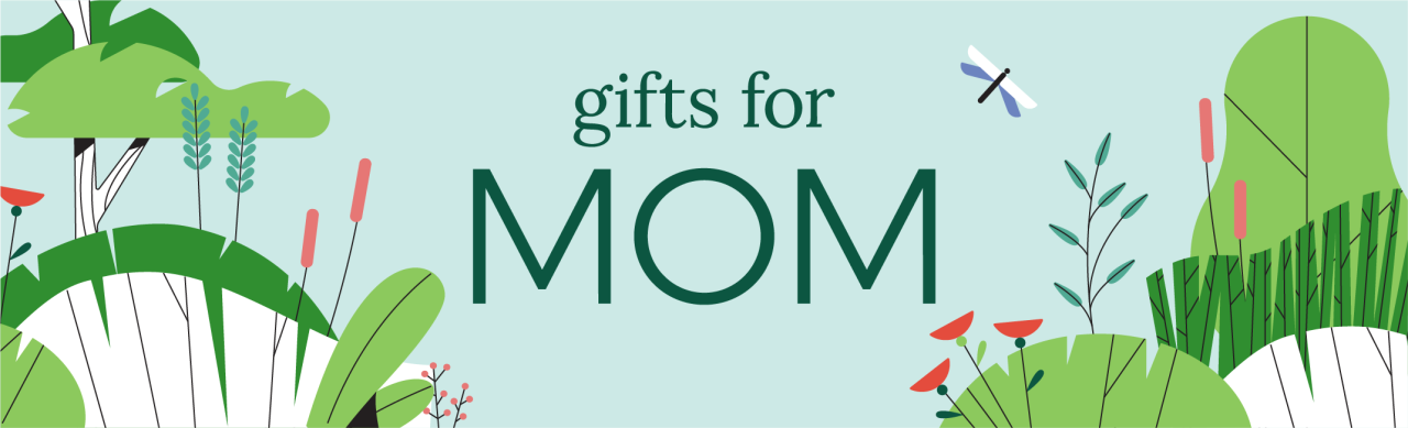 "An illustration of plants, flowers and a dragonfly with ""gifts for MOM""."