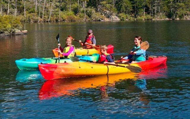 Group of people kayaking.
