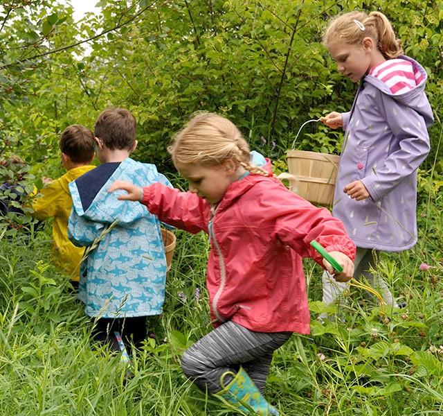 Children walking on wooden path in tall grass