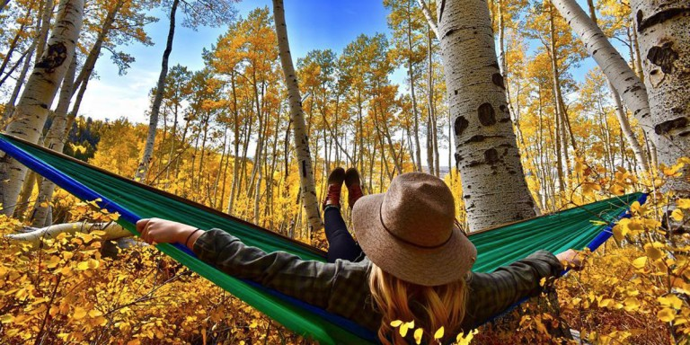 Woman relaxing in a hammock among golden fall birch trees under a bright blue sky.