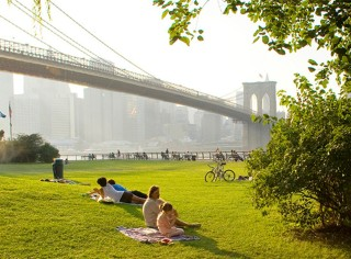 picnicers in a park under the Brooklyn Bridge