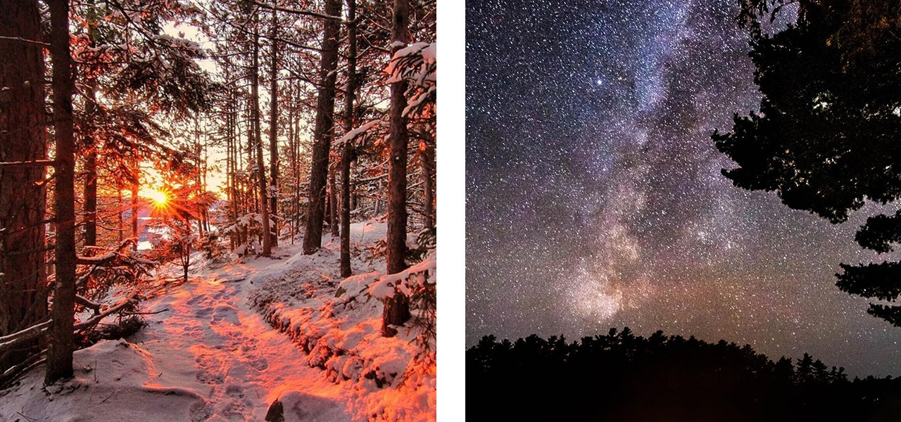 A collage of a beautiful sunset through the trees on a wooded path, and a starry night sky.