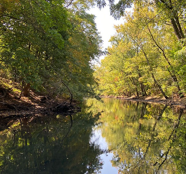 A peaceful tree-lined river.