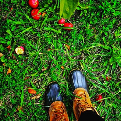 L.L.Bean Boots, walking through grass.