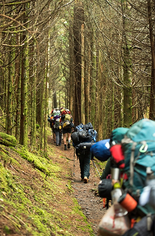 Group hiking through the woods.
