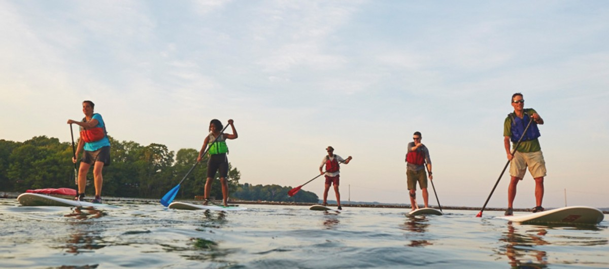 A group of paddleboarders.