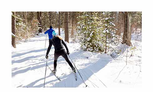 People Cross-Country Skiing on an Outdoor Discovery Course.