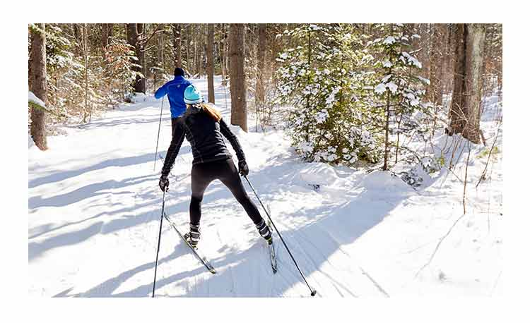 People cross-country skiing.