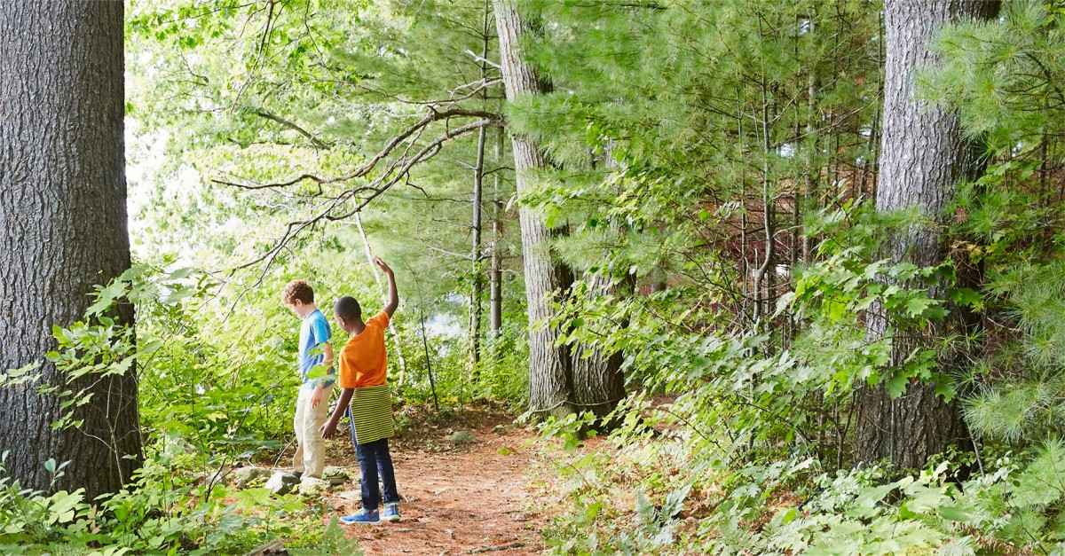 Image of kids hiking through forest.