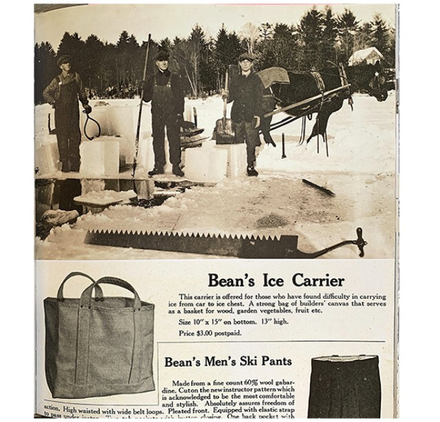 L.L.Bean Ice Carrier