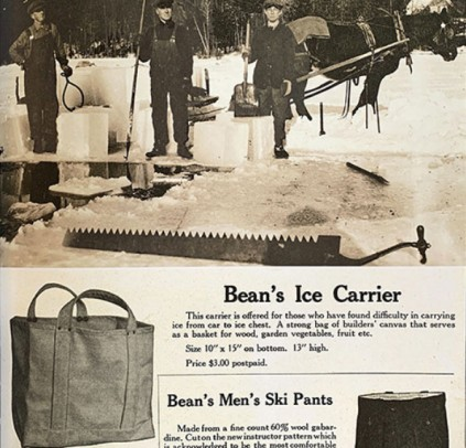 L.L.Bean Ice Carrier